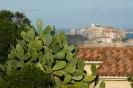 Cactus et citadelle