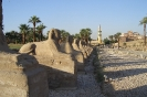 Egypte_42