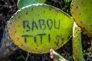 Babou Titi